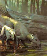 Leptoceratops An Alphabet of Dinosaurs