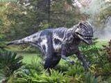 Megalosaurus/Gallery