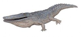 Mourasuchus.jpg