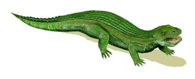 Simosuchus.jpg
