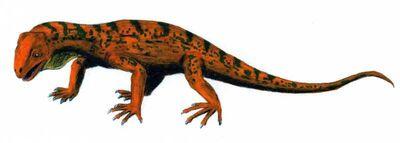 Trilophosaurus.jpg