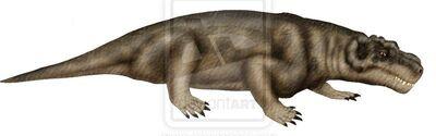 Bullacephalus.jpg