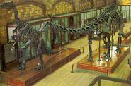 Iguanodon-BMNH-skeleton-1000x662