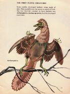 Archaeopteryx The First Life on Earth