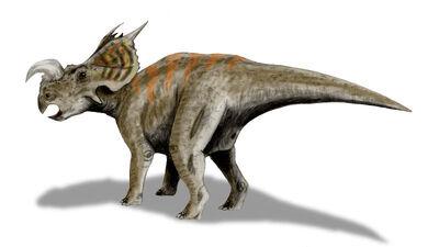 Einiosaurus.jpg