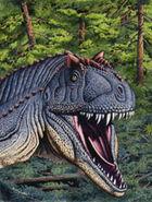 Bob acrocanthosaurus