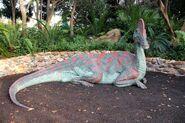 Corythosaurus at cretaceous trail