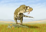 Daspletosaurus torDB