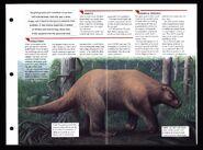 Wildlife fact file Giant Ground Sloth inside