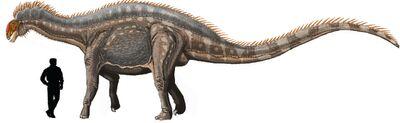 Dicraeosaurus.jpg