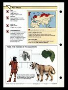 Wildlife fact file Woolly Mammoth back