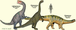 ProsauropodModels.jpg