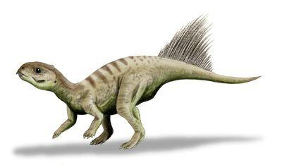 Chaoyangsaurus.jpg