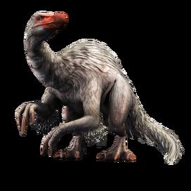 Deinocheirus profile.png