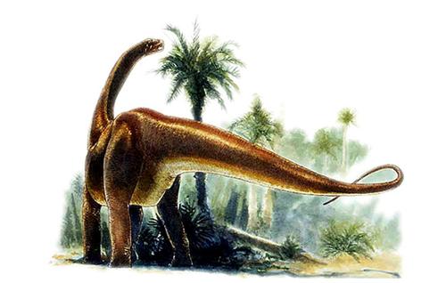 Datousaurus