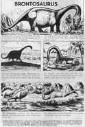 Turok-young-earth-dinosaurs-6