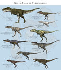 North american tyrannosaurs by paleoguy-d7kbqug