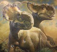 Pachyrhinosaurus Perotorum Alaska copyright web