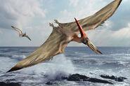 Pteranodon over sea