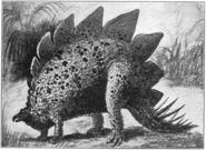Stegosaurus ungulatus 1905