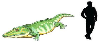 Mastodonsaurus.jpg