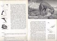 RARE Vintage 1957 World Dinosaurs Smithsonian Book Paleontology Natural History 5