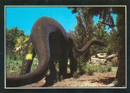 Diplodocus-1000x712