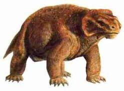 Pareiasaurus.jpg