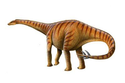 Spinophorosaurus.jpg