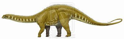Apatosaurus2.jpg