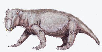 Lystrosaurus.jpg