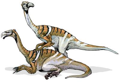Nanshiungosaurus.png
