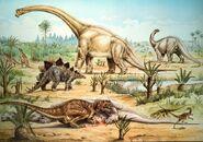 Natural-History-Museum-postcard-700x490