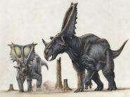 496 chasmosaurus steve white