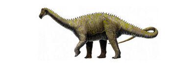 Quaesitosaurus.jpg