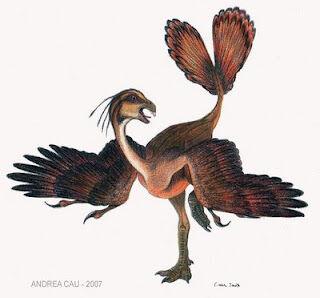Incisivosaurus.jpg