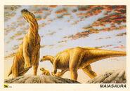 Maiasaura-card