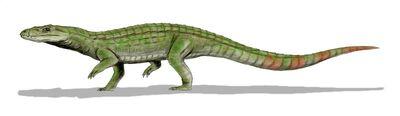 Sichuanosuchus.jpg