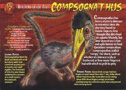 Compsognathus front
