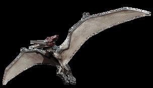 JW pteranodon.png