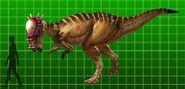 Pachycephalosaurus dk