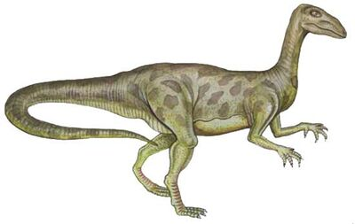 Halticosaurus.jpg