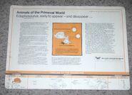 Primeval World Edaphosaurus card back
