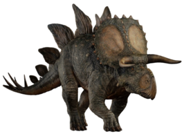 Stegoceratops by camo flauge-dcfu75a.png