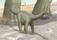 Brontosaurus young by Paleopeter