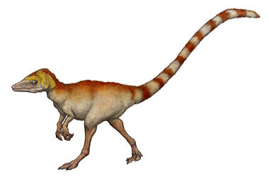 Sinosauropteryx.jpg