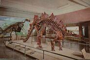 Coloradostegosaurus 1950