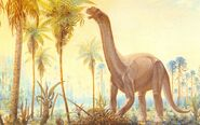 Krb-Camarasaurus-postcard-1000x625
