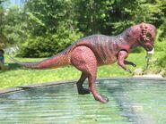 Pachycephalosaurus Tyco