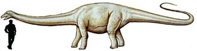 Cetiosauriscus.jpg
